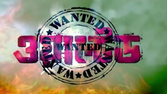 wanted (2010) bengali full movie download 1080p